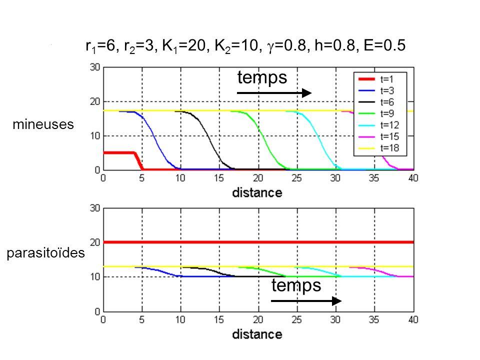 Propagation spatiale des mineuses et des parasitoïdes r 1 =4, r 2 =3, K 1 =150, K 2 =100, =0.8, h=0.8, E=1 mineuses parasitoïdes temps