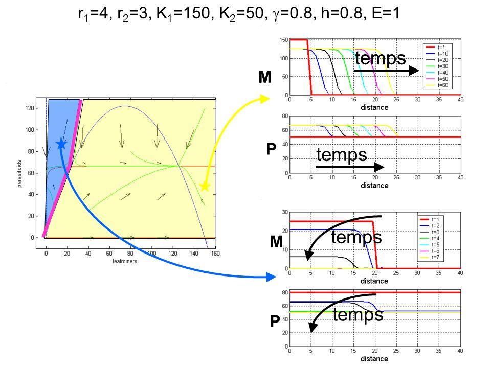r 1 =6, r 2 =3, K 1 =20, K 2 =10, =0.8, h=0.8, E=0.5 mineuses parasitoïdes temps