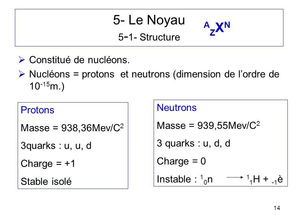 14 5- Le Noyau 5 - 1- Structure Constitué de nucléons. Nucléons = protons et neutrons (dimension de lordre de 10 -15 m.) Protons Masse = 938,36Mev/C 2