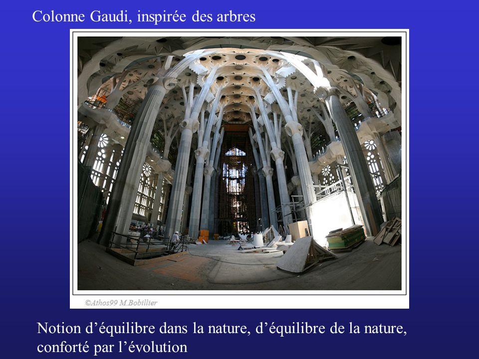 Notion déquilibre dans la nature, déquilibre de la nature, conforté par lévolution Colonne Gaudi, inspirée des arbres