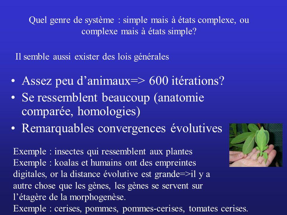 Quel genre de système : simple mais à états complexe, ou complexe mais à états simple? Assez peu danimaux=> 600 itérations? Se ressemblent beaucoup (a
