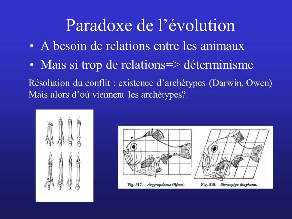 Paradoxe de lévolution A besoin de relations entre les animaux Mais si trop de relations=> déterminisme Résolution du conflit : existence darchétypes