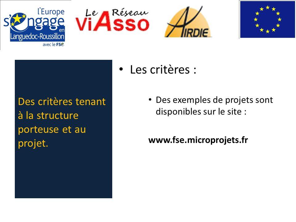 Les critères : Des exemples de projets sont disponibles sur le site : www.fse.microprojets.fr Des critères tenant à la structure porteuse et au projet