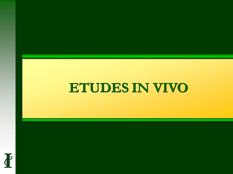 ETUDES IN VIVO