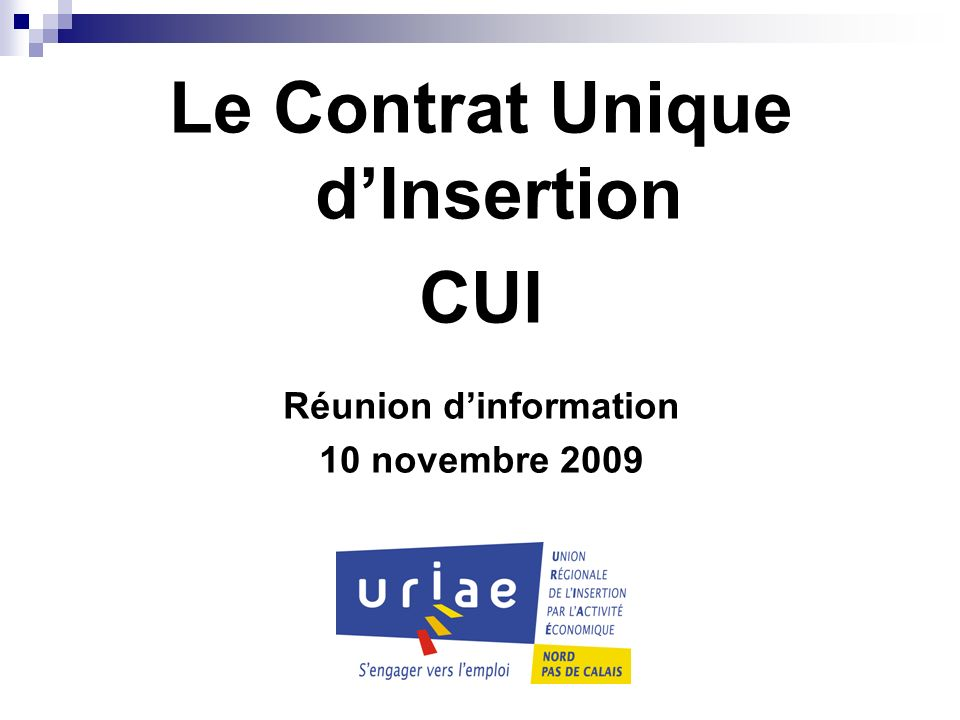 Le Contrat Unique dInsertion CUI Réunion dinformation 10 novembre 2009