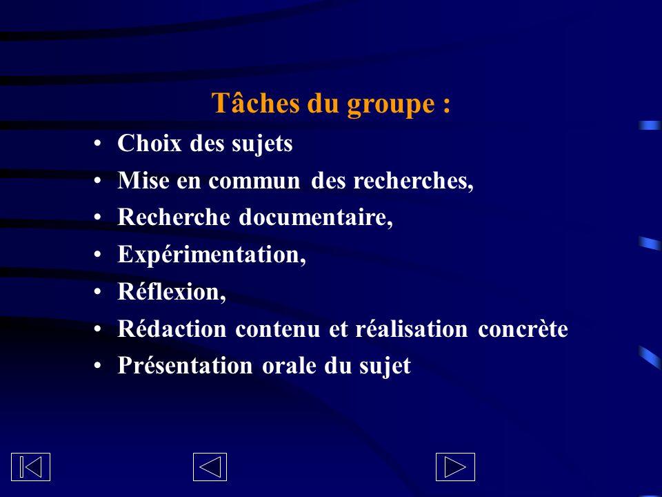 Tâches du groupe : Choix des sujets Mise en commun des recherches, Recherche documentaire, Expérimentation, Réflexion, Rédaction contenu et réalisatio