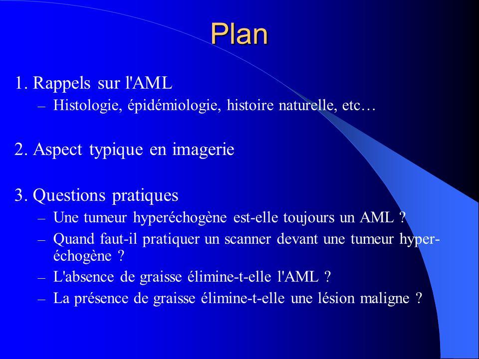 Plan 1. Rappels sur l'AML – Histologie, épidémiologie, histoire naturelle, etc… 2. Aspect typique en imagerie 3. Questions pratiques – Une tumeur hype
