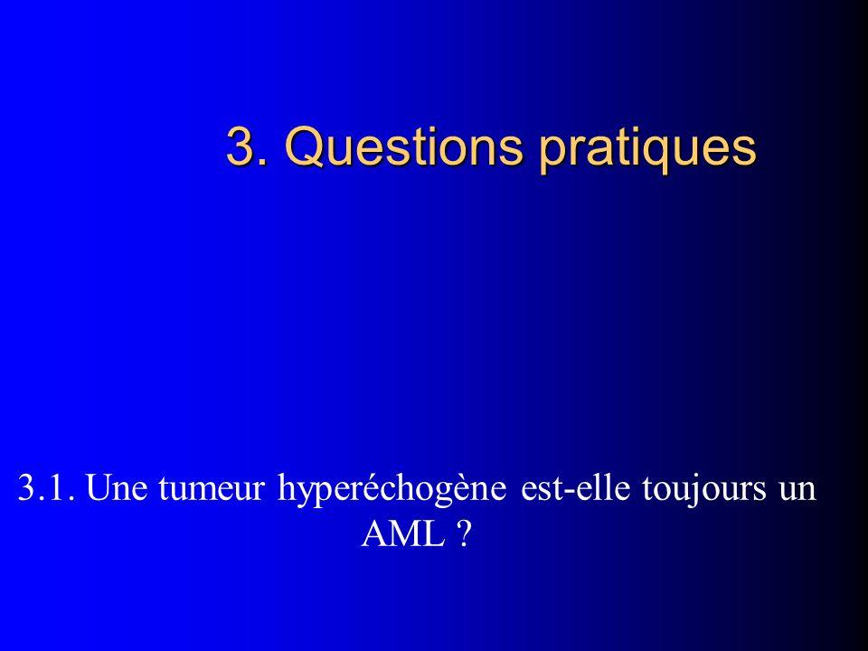 3. Questions pratiques 3.1. Une tumeur hyperéchogène est-elle toujours un AML ?