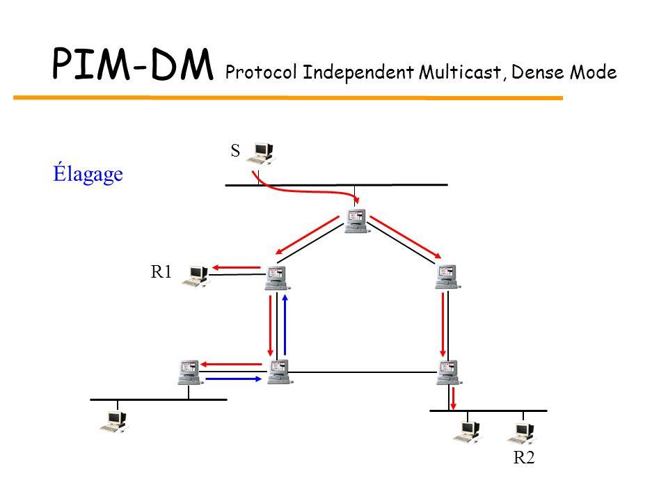 PIM-DM Protocol Independent Multicast, Dense Mode S R2 R1 Élagage
