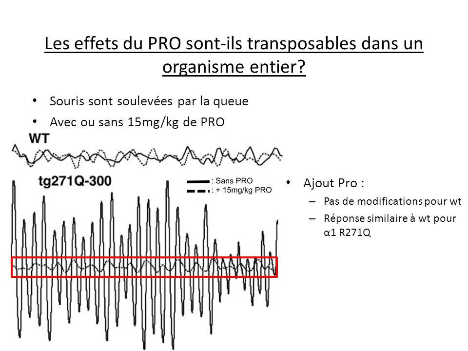Les effets du PRO sont-ils transposables dans un organisme entier? Ajout Pro : – Pas de modifications pour wt – Réponse similaire à wt pour α1 R271Q S