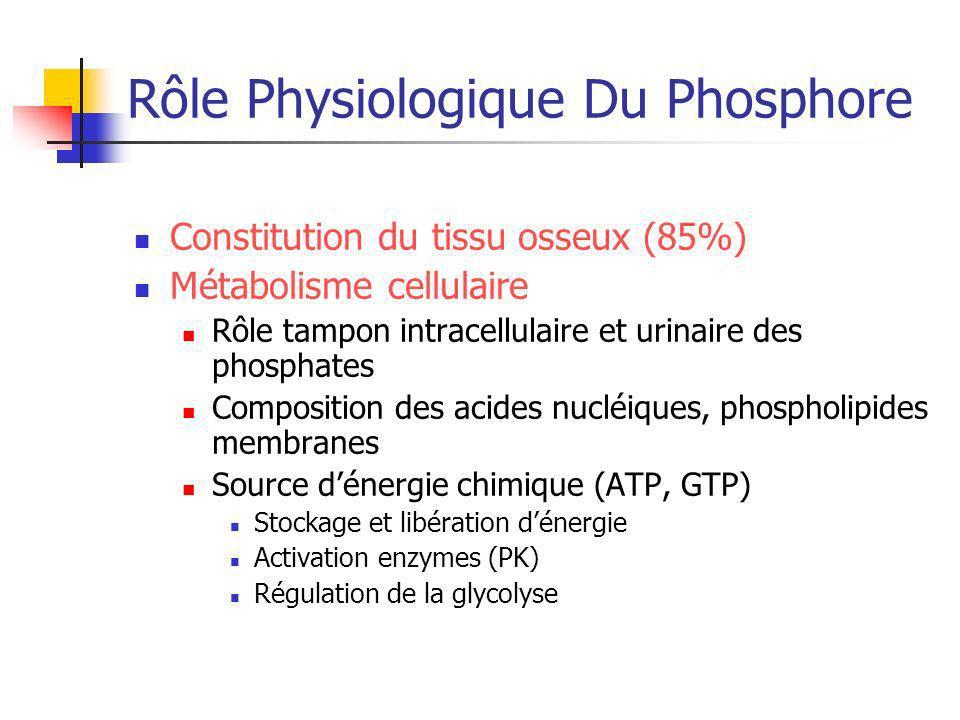 Rôle Physiologique Du Phosphore Constitution du tissu osseux (85%) Métabolisme cellulaire Rôle tampon intracellulaire et urinaire des phosphates Compo