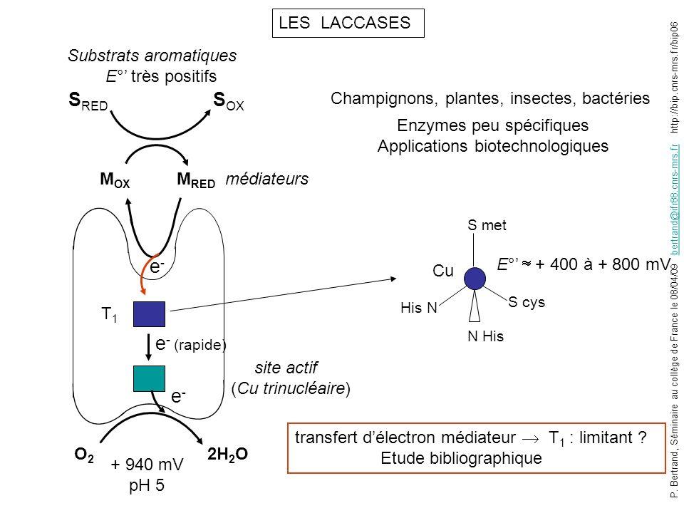 LES LACCASES S RED e - (rapide) e-e- e-e- S OX O2O2 2H 2 O M RED M OX T1T1 + 940 mV pH 5 Substrats aromatiques E° très positifs médiateurs Champignons