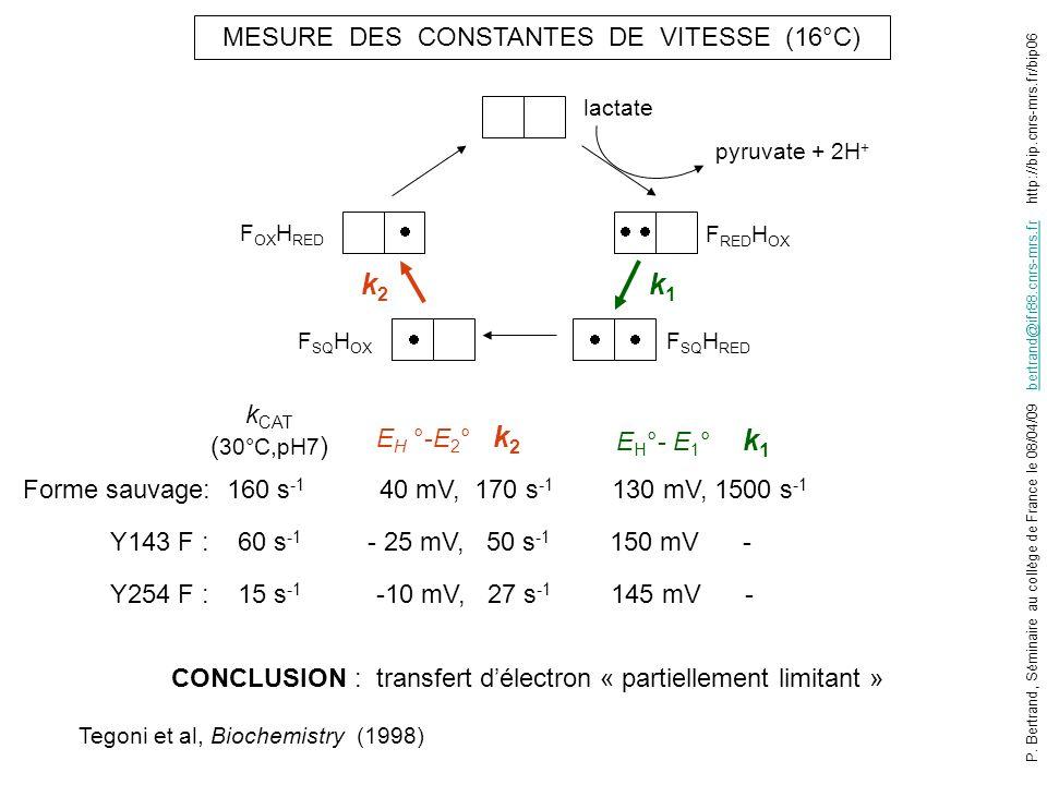 MESURE DES CONSTANTES DE VITESSE (16°C) E H °- E 1 ° k 1 E H °-E 2 ° k 2 Forme sauvage: 160 s -1 40 mV, 170 s -1 130 mV, 1500 s -1 Y143 F : 60 s -1 -