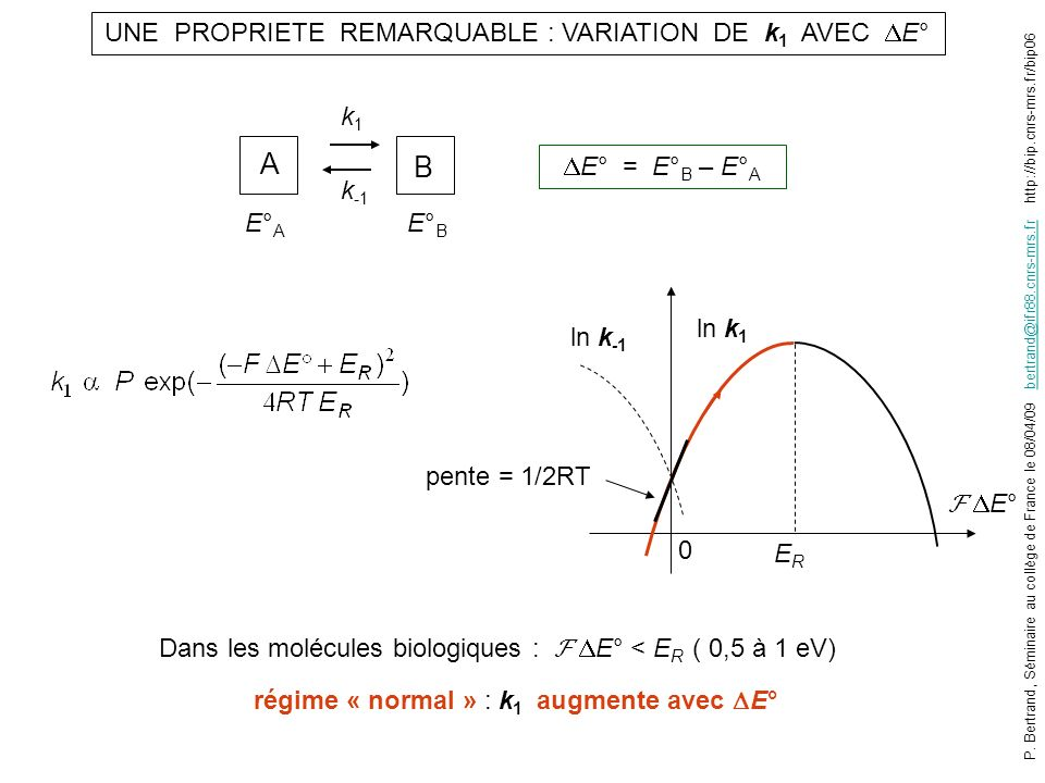 LA CONSTANTE CATALYTIQUE k CAT S RED A OX e-e- e-e- e-e- S OX A RED Quand [S RED ] 0 et [A OX ] 0 assez grandes (saturantes) : V i ne dépend que des processus intramoléculaires V i = k CAT [enzyme] cycle catalytique E E1E1 E2E2 E3E3 E4E4 modèle cinétique k CAT = f(k 1, k 2, k -2, …) Si étapes quasi irréversibles : 1/k CAT = 1/k 1 + 1/k 2 + 1/k 3 + 1/k 4 + 1/k 5 Notion détape limitante k CAT = nombre de cycles par seconde k1k1 k2k2 k -2 P.