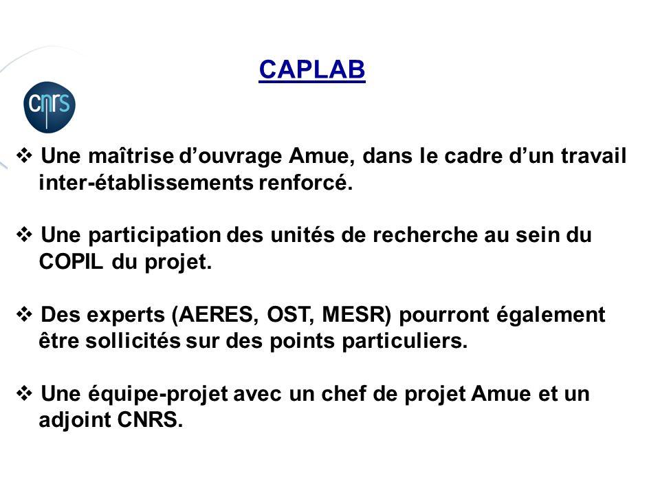 P. 9 CAPLAB Une maîtrise douvrage Amue, dans le cadre dun travail inter-établissements renforcé. Une participation des unités de recherche au sein du