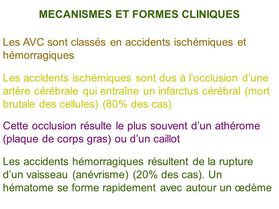 Les AVC sont classés en accidents ischémiques et hémorragiques Les accidents ischémiques sont dus à locclusion dune artère cérébrale qui entraîne un i