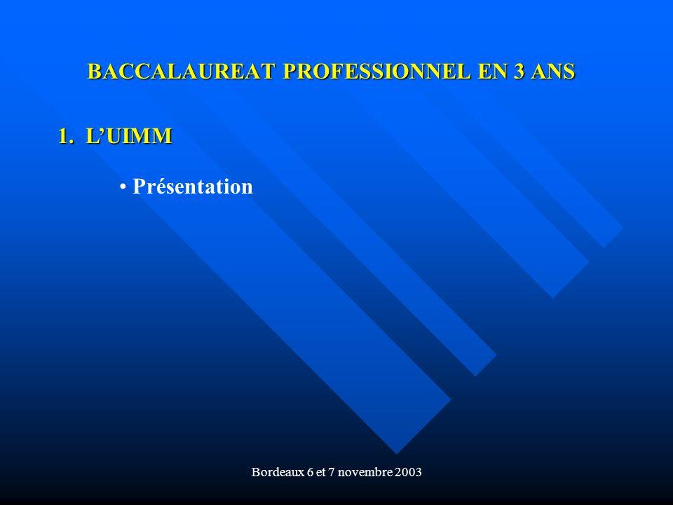 Bordeaux 6 et 7 novembre 2003 BACCALAUREAT PROFESSIONNEL EN 3 ANS 1. LUIMM Présentation