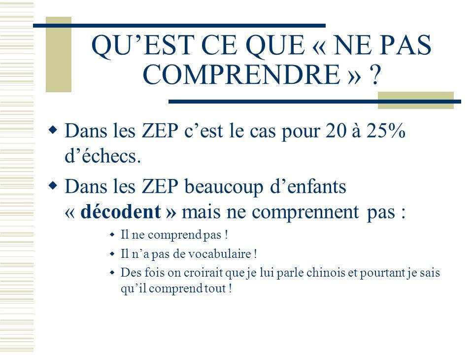 QUEST CE QUE « NE PAS COMPRENDRE » ? Dans les ZEP cest le cas pour 20 à 25% déchecs. Dans les ZEP beaucoup denfants « décodent » mais ne comprennent p