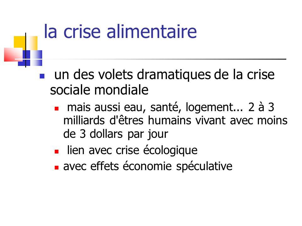 la crise financière largement prévisible sauf pour les économistes dominants...