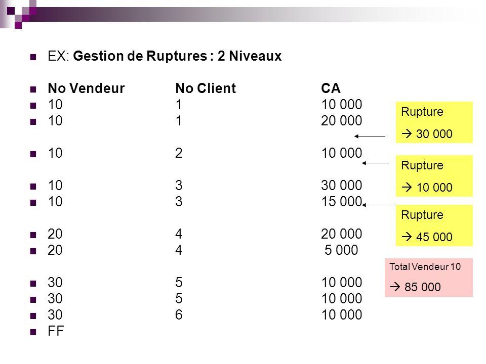 EX: Gestion de Ruptures : 2 Niveaux No VendeurNo ClientCA 10110 000 10120 000 10210 000 10330 000 10315 000 20420 000 204 5 000 30510 000 30610 000 FF