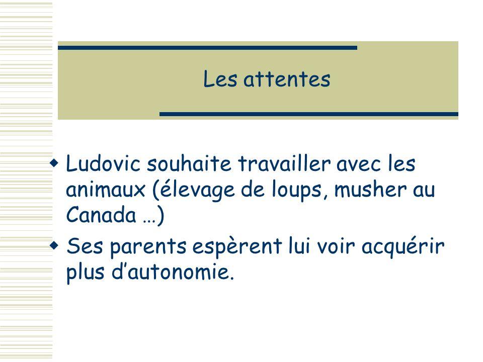 Les attentes Ludovic souhaite travailler avec les animaux (élevage de loups, musher au Canada …) Ses parents espèrent lui voir acquérir plus dautonomie.