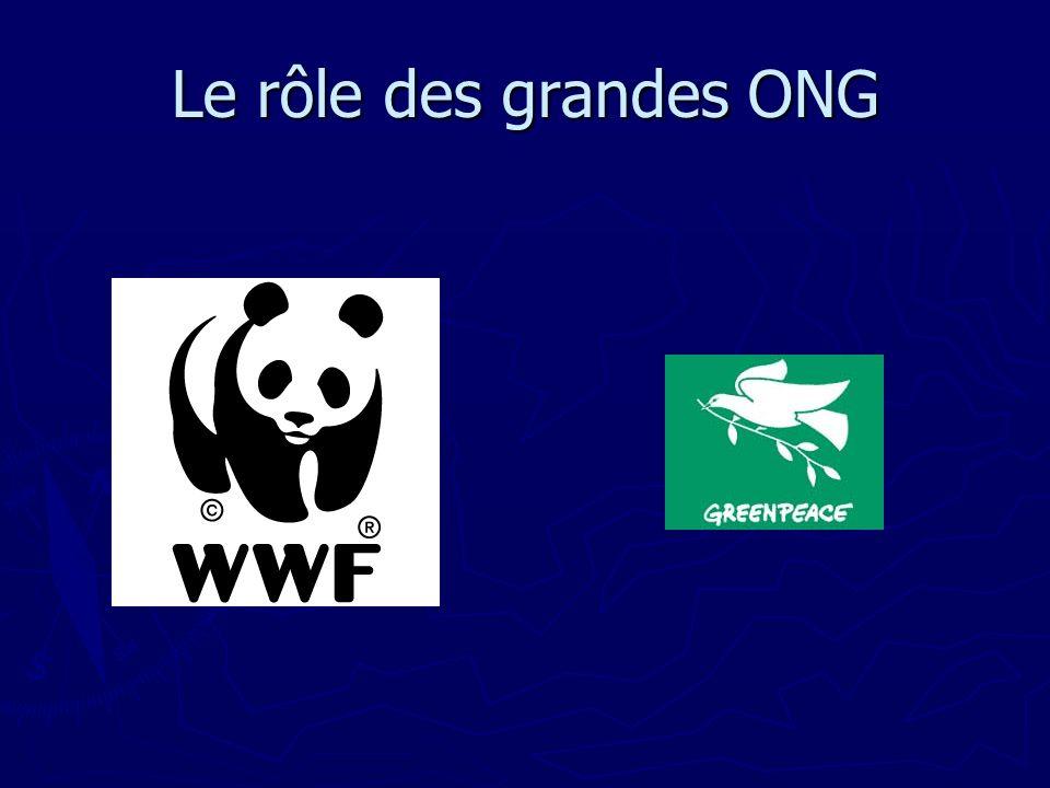 Le rôle des grandes ONG