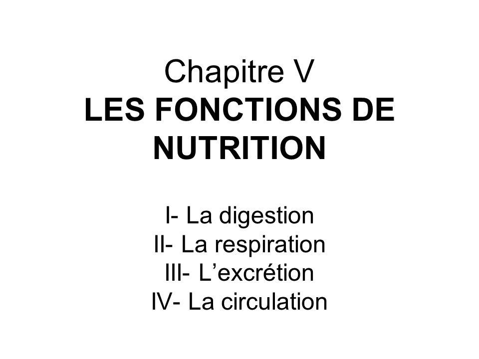 Chapitre V LES FONCTIONS DE NUTRITION I- La digestion II- La respiration III- Lexcrétion IV- La circulation