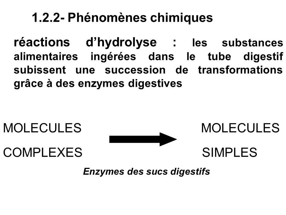 1.2.2- Phénomènes chimiques réactions dhydrolyse : les substances alimentaires ingérées dans le tube digestif subissent une succession de transformati