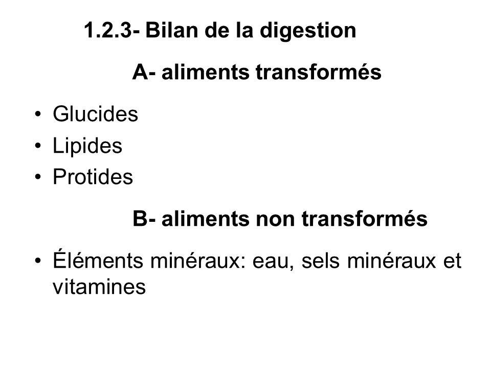 1.2.3- Bilan de la digestion A- aliments transformés Glucides Lipides Protides B- aliments non transformés Éléments minéraux: eau, sels minéraux et vi