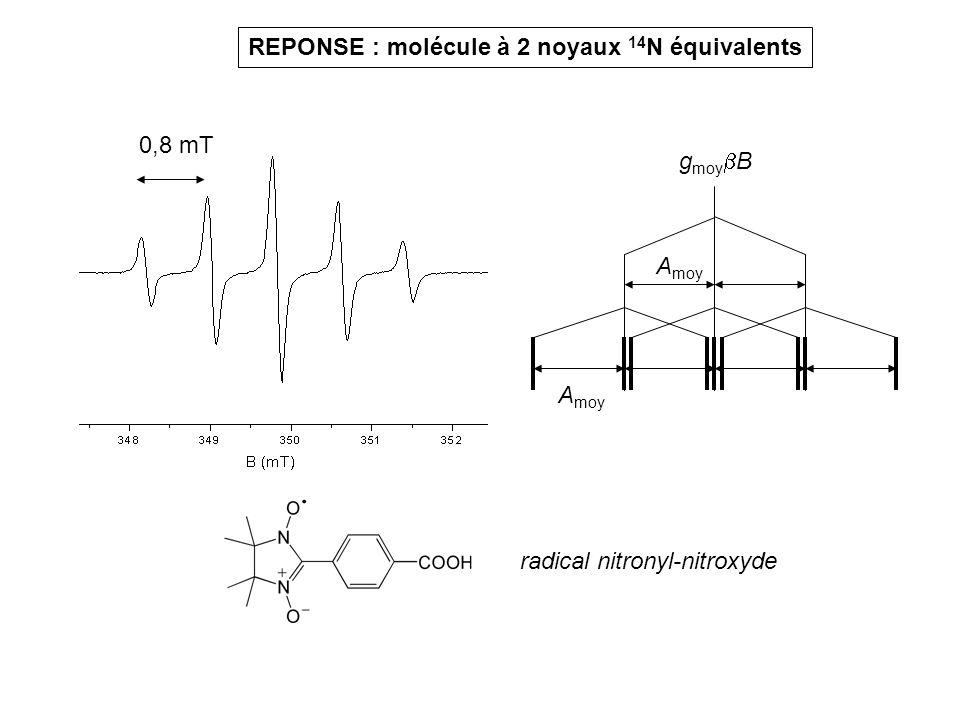 radical nitronyl-nitroxyde REPONSE : molécule à 2 noyaux 14 N équivalents 0,8 mT g moy B A moy