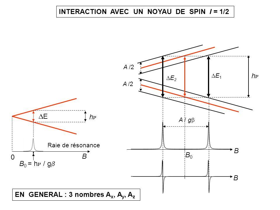 B B h B0B0 A / g E 2 E 1 A /2 B h B 0 = h / g 0 E Raie de résonance INTERACTION AVEC UN NOYAU DE SPIN I = 1/2 EN GENERAL : 3 nombres A x, A y, A z