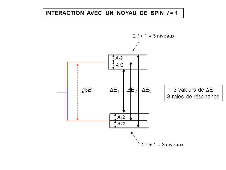 EXEMPLE : RADICAL NITROXYDE, 1 noyau 14 N (I = 1) nitroxyde MTSL en solution greffé sur lipase Solution gelée 100 K B B A moy /g moy B0B0 mesure g moy Si mouvements rapides Mesure de g x, g y, g z A x, A y, A z 1,5 mT noyau 14 N