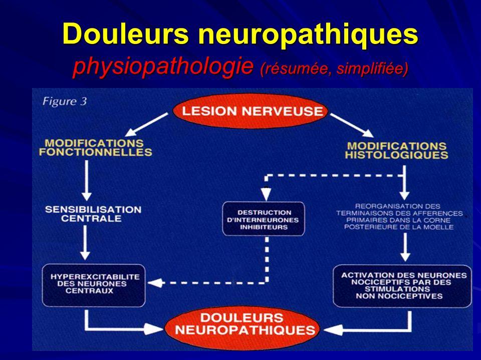 35 Douleurs neuropathiques physiopathologie (résumée, simplifiée)