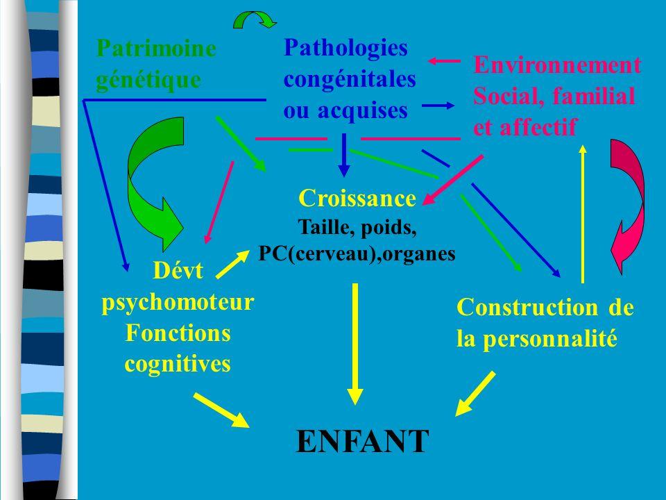 ENFANT Dévt psychomoteur Fonctions cognitives Croissance Taille, poids, PC(cerveau),organes Construction de la personnalité Patrimoine génétique Patho
