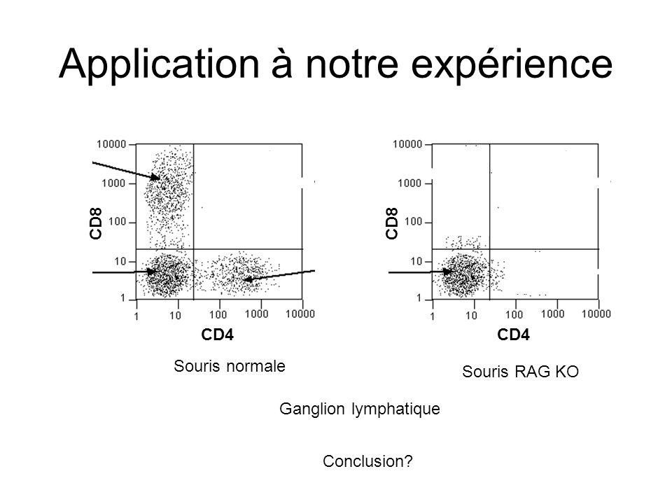 Application à notre expérience CD4 CD8 Ganglion lymphatique Souris normale Souris RAG KO CD4 CD8 Conclusion?