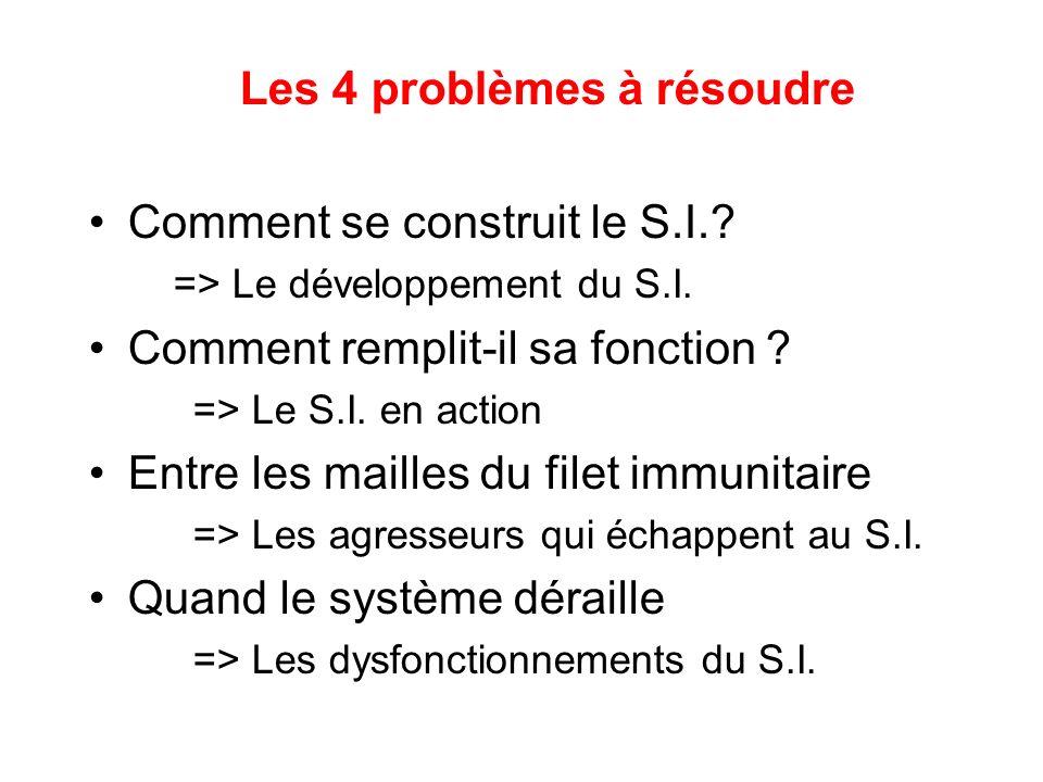 Les 4 problèmes à résoudre Comment se construit le S.I.? => Le développement du S.I. Comment remplit-il sa fonction ? => Le S.I. en action Entre les m