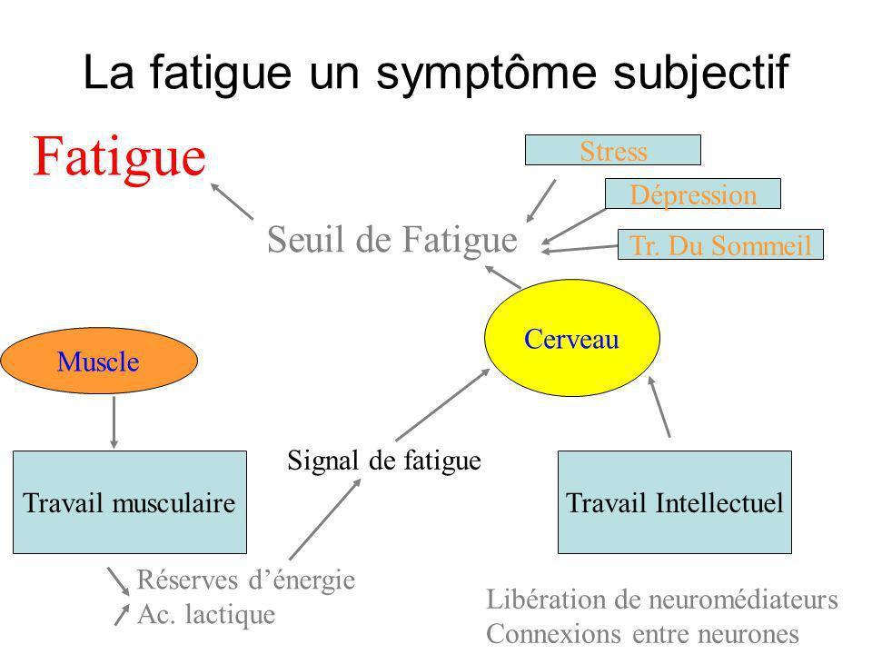 Muscle Cerveau Travail musculaireTravail Intellectuel Réserves dénergie Ac. lactique Signal de fatigue Libération de neuromédiateurs Connexions entre