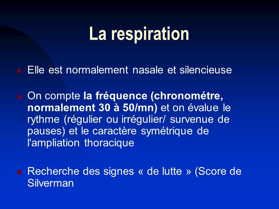 La respiration Elle est normalement nasale et silencieuse On compte la fréquence (chronométre, normalement 30 à 50/mn) et on évalue le rythme (régulie