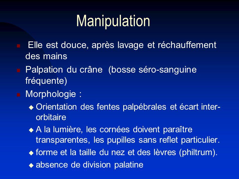 Manipulation Elle est douce, après lavage et réchauffement des mains Palpation du crâne (bosse séro-sanguine fréquente) Morphologie : Orientation des