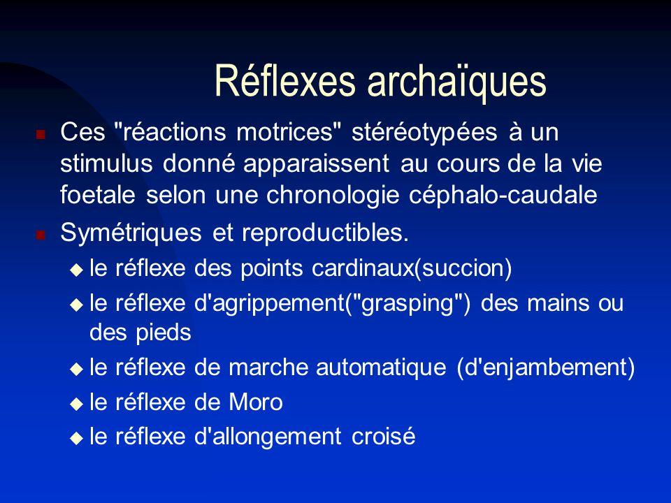 Réflexes archaïques Ces