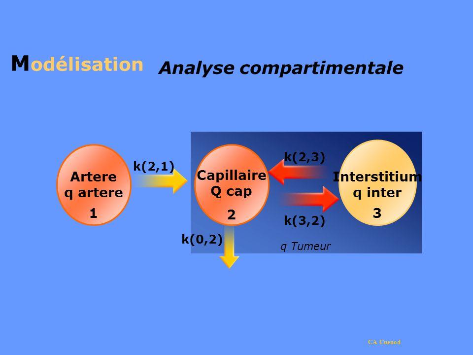 CA Cuenod Artere q artere 1 Capillaire Q cap 2 M odélisation Analyse compartimentale k(2,3) q Tumeur Interstitium q inter 3 k(3,2) k(2,1) k(0,2)