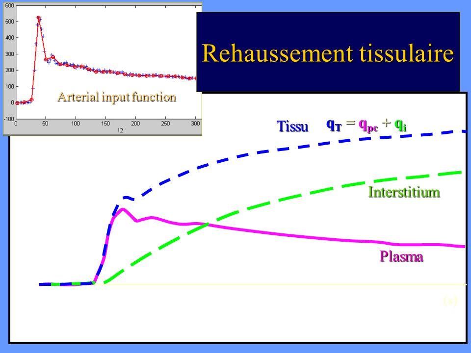 CA Cuenod (s) AIF Arterial input function Interstitium Plasma Tissu q T = q pc + q i Rehaussement tissulaire