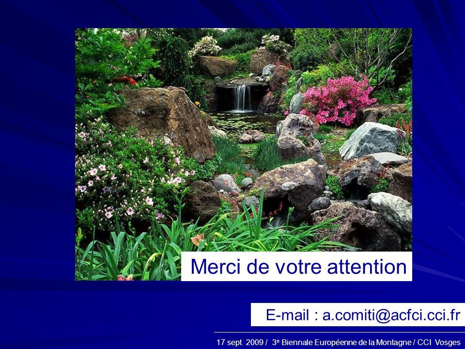 17 sept. 2009 / 3 e Biennale Européenne de la Montagne / CCI Vosges Merci de votre attention E-mail : a.comiti@acfci.cci.fr