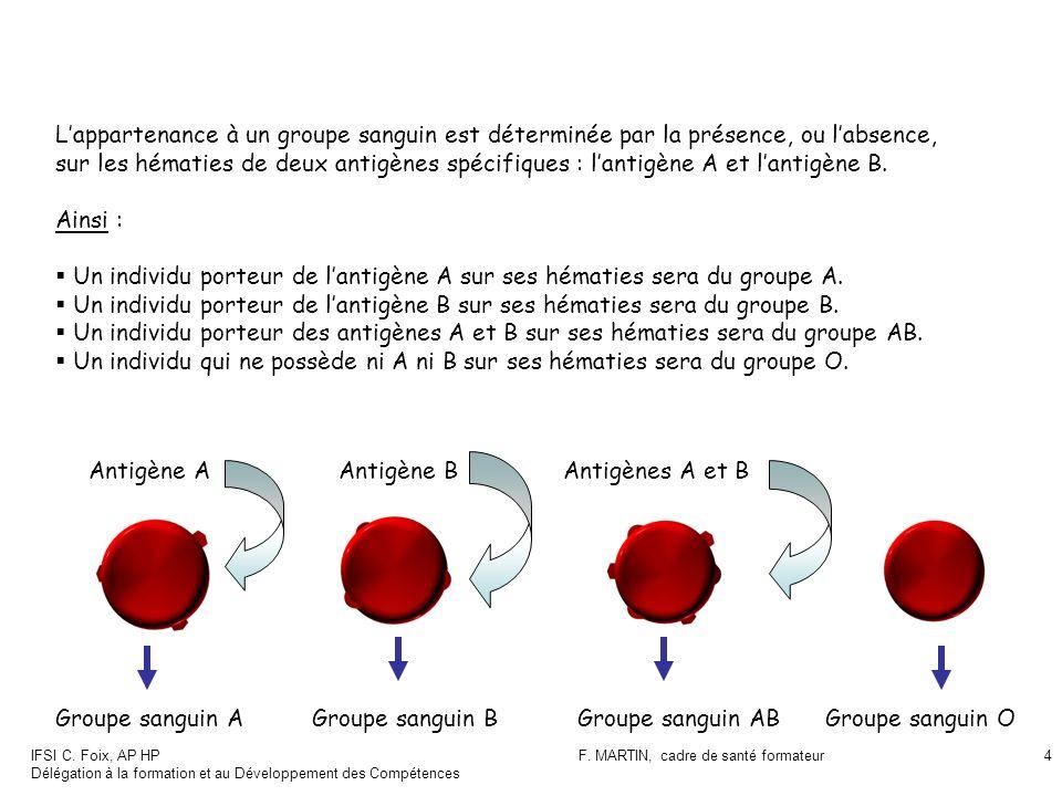 IFSI C. Foix, AP HP Délégation à la formation et au Développement des Compétences F. MARTIN, cadre de santé formateur4 Lappartenance à un groupe sangu