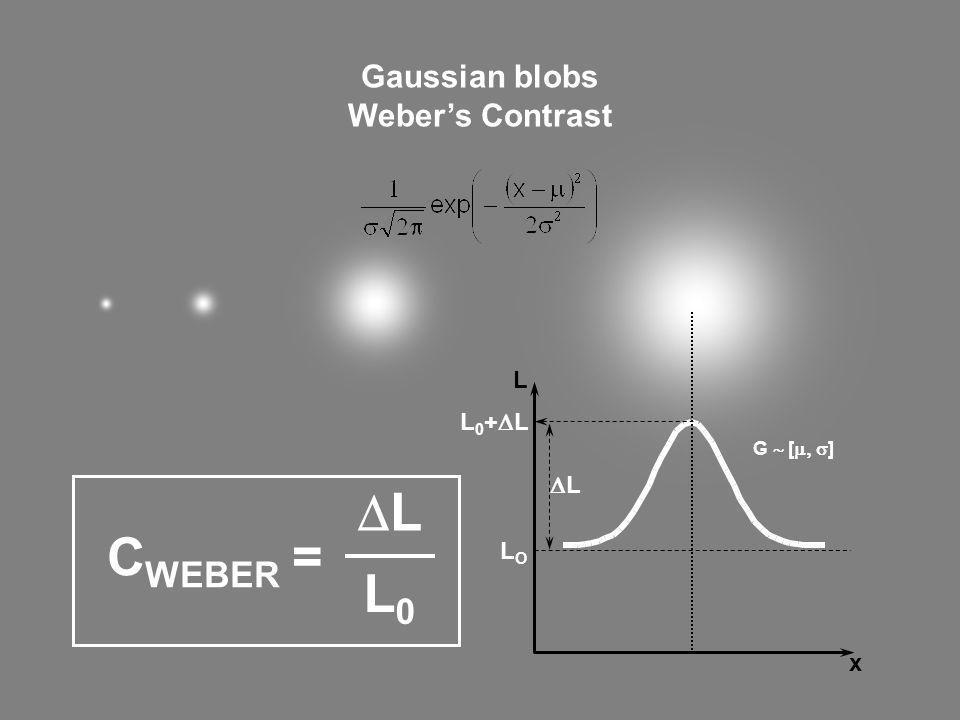 LOLO L 0 + L L L x C WEBER = L L0L0 Gaussian blobs Webers Contrast G [ ]
