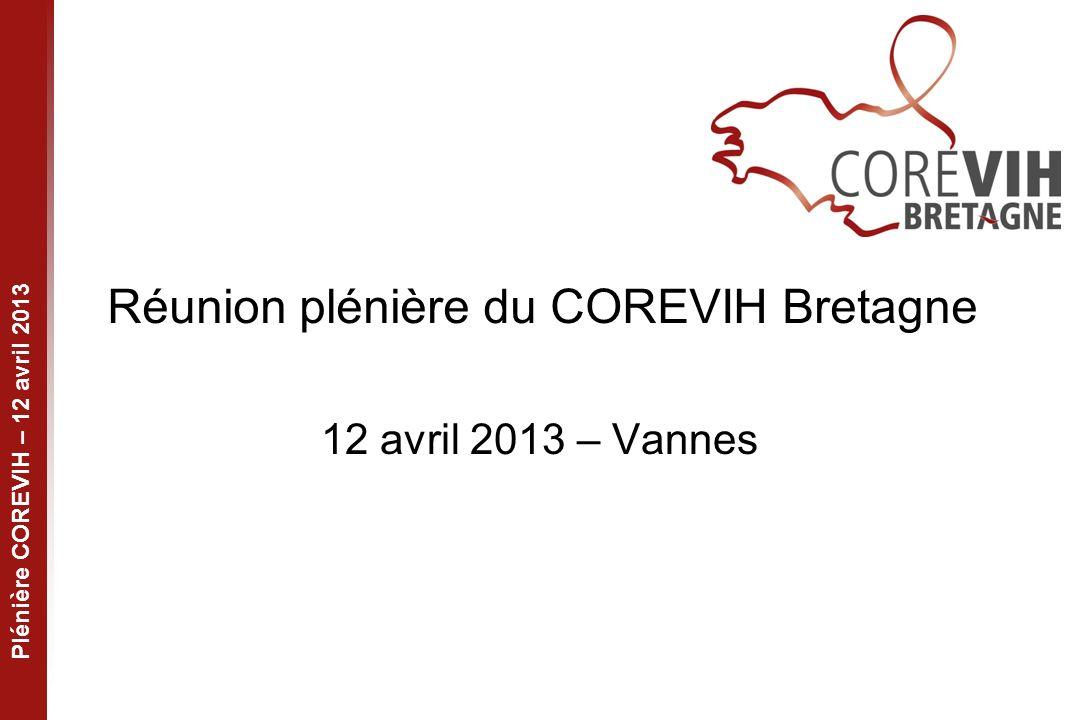 Plénière COREVIH – 12 avril 2013 Réunion plénière du COREVIH Bretagne 12 avril 2013 – Vannes