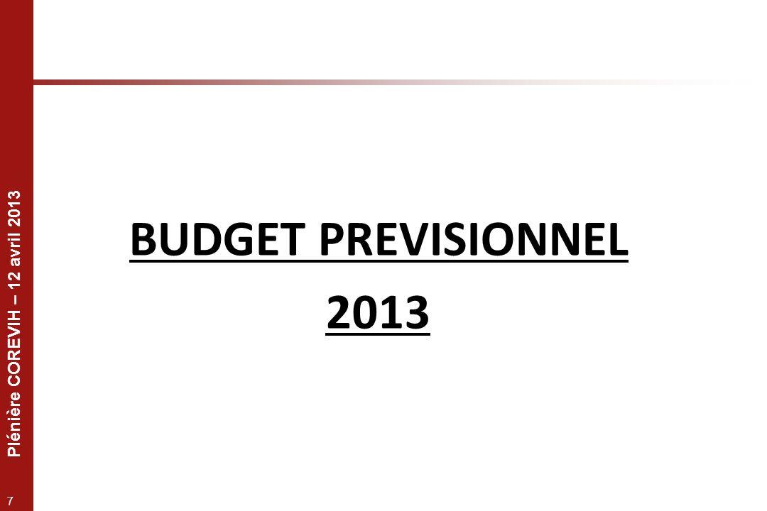Plénière COREVIH – 12 avril 2013 7 BUDGET PREVISIONNEL 2013