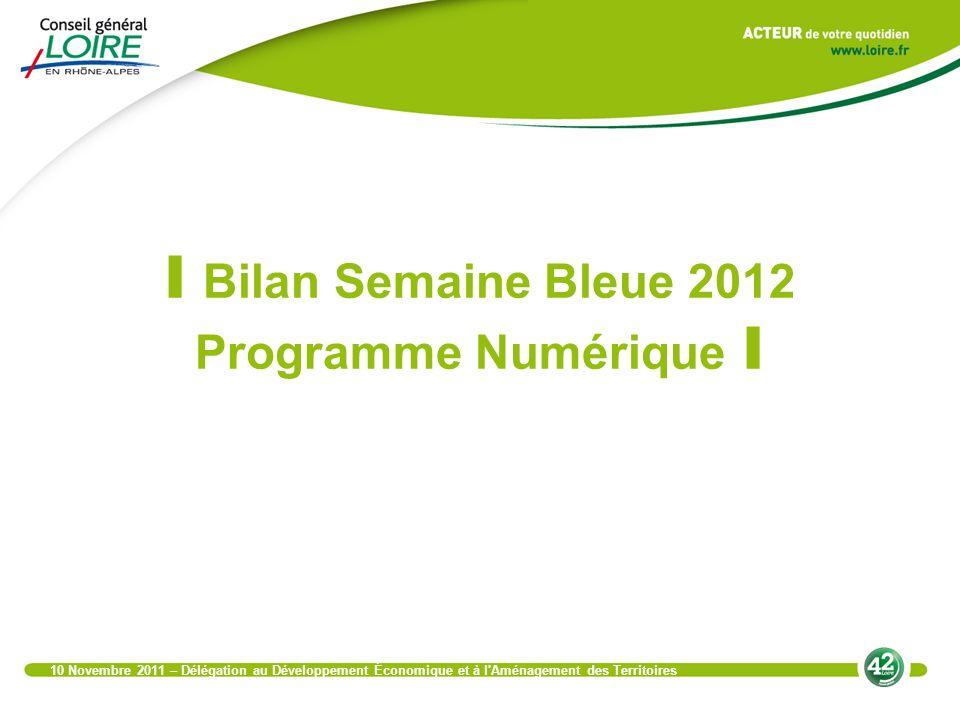 I Bilan Semaine Bleue 2012 Programme Numérique I 10 Novembre 2011 – Délégation au Développement Économique et à l Aménagement des Territoires