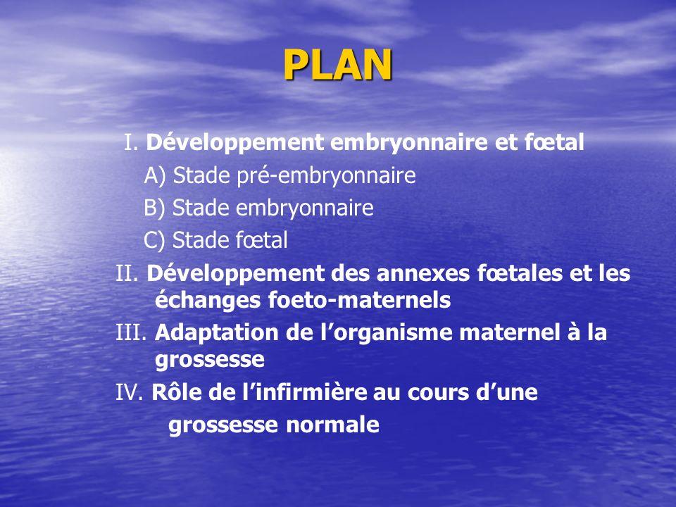PLAN I. Développement embryonnaire et fœtal A) Stade pré-embryonnaire B) Stade embryonnaire C) Stade fœtal II. Développement des annexes fœtales et le