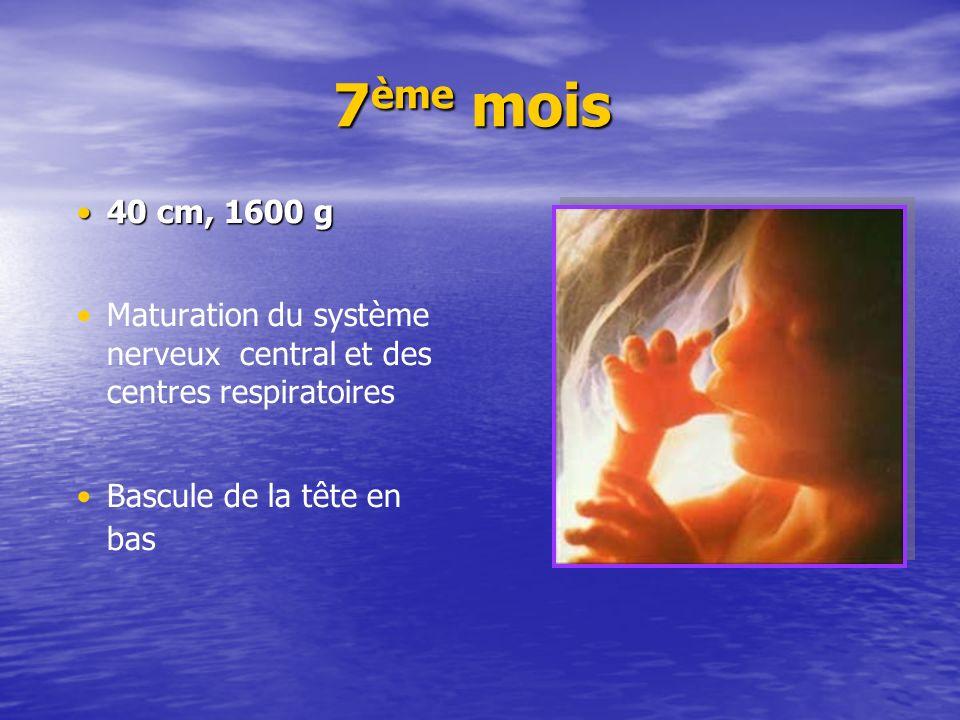 7 ème mois 7 ème mois 40 cm, 1600 g40 cm, 1600 g Maturation du système nerveux central et des centres respiratoires Bascule de la tête en bas